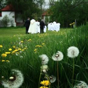 A menyasszonyból egyetlen éjszaka leforgása alatt háziasszony lesz